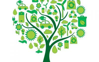 Día Mundial del Medio Ambiente (2021), en Bocema.