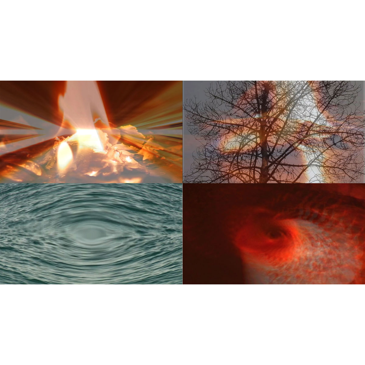 MONIKA RÜHLE - Las visiones de Hildegard