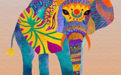 """Boni Ofogo: """"El elefante que perdió su ojo"""" y otros cuentos africanos."""
