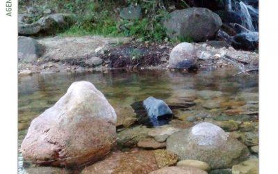 """""""En la orilla del río"""""""