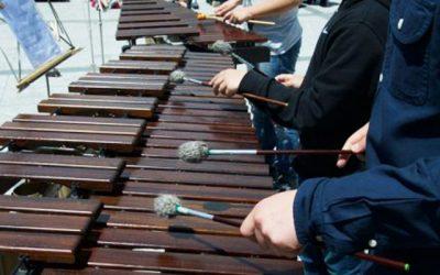 Concierto Pequeñas Agrupaciones. Escuela Municipal de Música y Danza de Alpedrete.