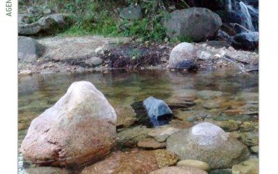"""""""Manzanares, un río con vida"""""""