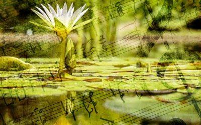 Voz, Creación y Meditación