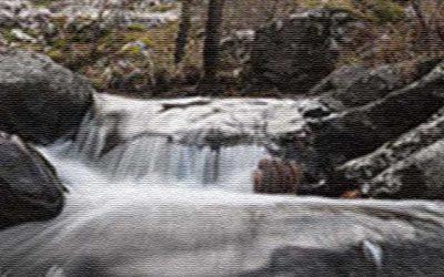 Senderismo: Cascada del Purgatorio y Bosque de Finlandia