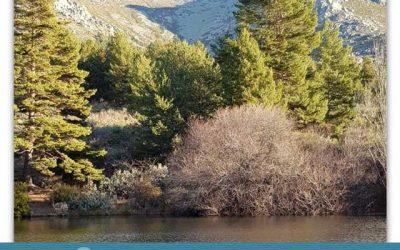Los ecosistemas del Parque Nacional.