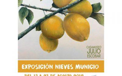 Nieves Municio