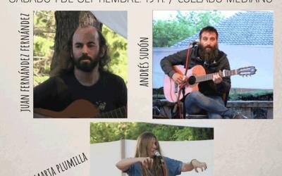 Juan Fernández Fernández + Andrés Sudón + Marta Plumilla