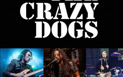 The Crazy Dogs