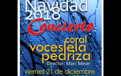 Concierto de Navidad: Coral Voces de La Pedriza.