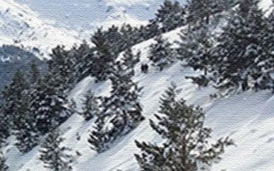 Ruta de raquetas de nieve: Las mejores vistas de la Sierra de Guadarrama.