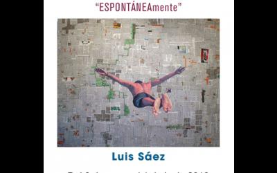 Luis Sáez