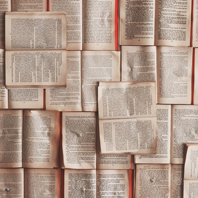 Día del Libro (2021), en Manzanares El Real.