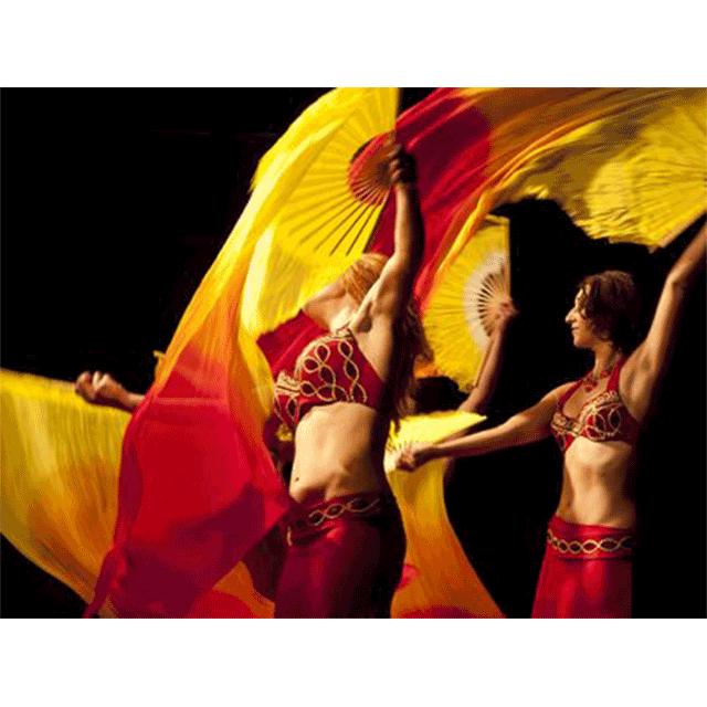 Festival de fin de curso: Danza Oriental.