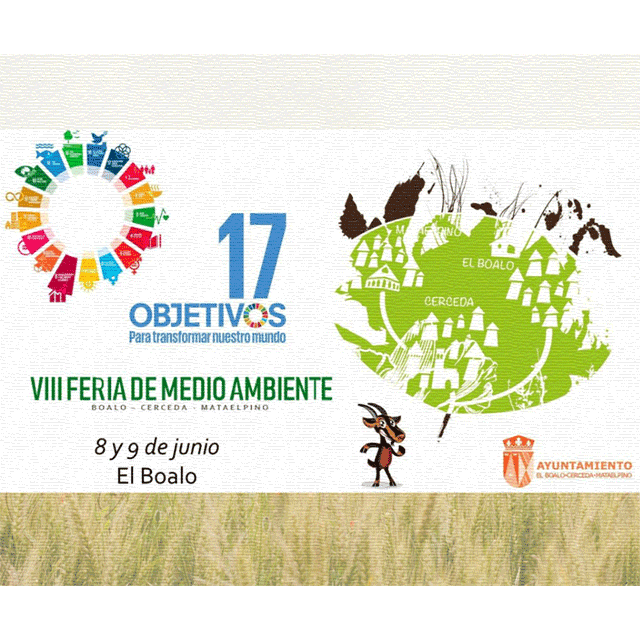 VIII Feria de Medio Ambiente.
