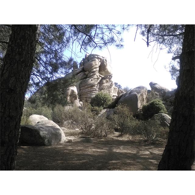 Ruta familiar: Los Picos de la Higuera