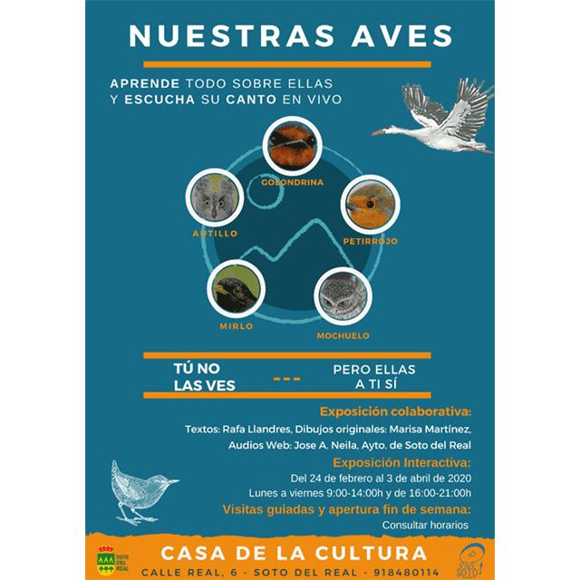 """Exposición: """"Nuestras Aves"""" (Visita Virtual)"""