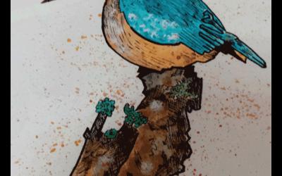 """Exposición: """"Revuelto de Aves"""""""
