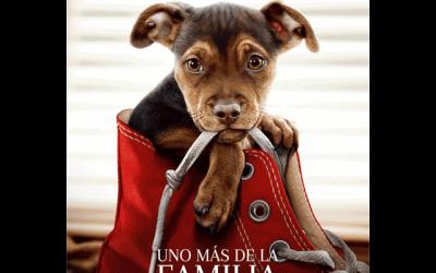 """Cine de verano: """"Uno más de la familia"""""""