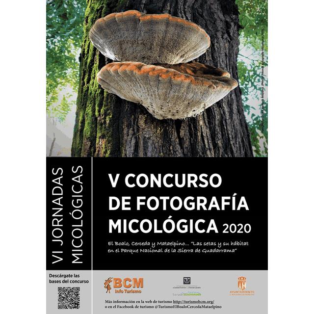 V Concurso de Fotografía Micológica (2020)
