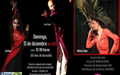 «Musas Gitanas» (VIIMicro Festival Romalic)