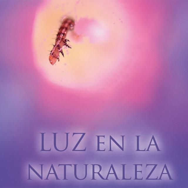 Exposición: «Luz en la Naturaleza»