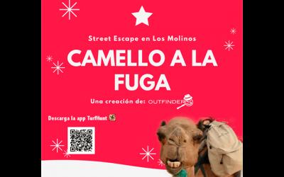 "Street Escape: ""Camello a la fuga"""