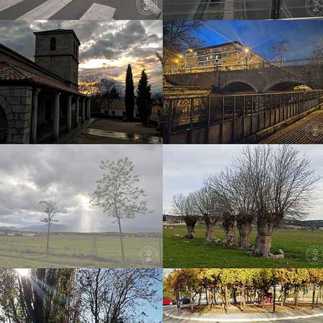 Exposición: I Muestra Digital de Fotografía con Móvil (2021)