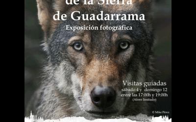 """Exposición: """"Fauna y diversidad en la Sierra de Guadarrama"""""""